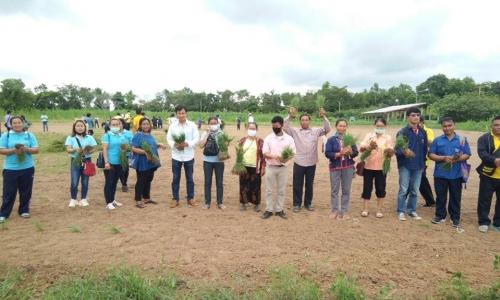 การอบรมเกษตรกรโครงการเพิ่มประสิทธิภาพและยกระดับมาตรฐานคุณภาพโคเนื้อ หลักสูตร พืชอาหารสัตว์และการจัดเตรียมเสบียงสัตว์
